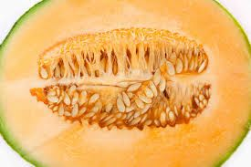 semillasmelon
